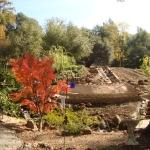 pond-stucco-rock-30